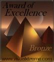 Visual Xtreme Bronze Award of Excellence