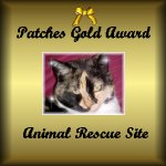 The Calico Girls Gold Award for Animal Rescue Site