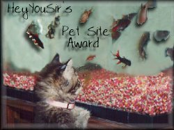 Hey You Sir Pet Site Award